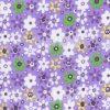Purple Daisies 1