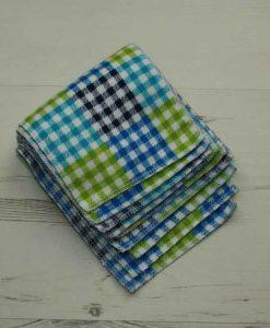 Blue Checked - Family cloth - Set of 9 | Luna Landings