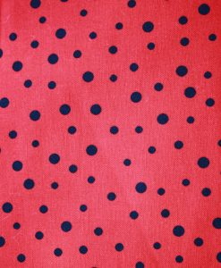 Ladybird Shell 1