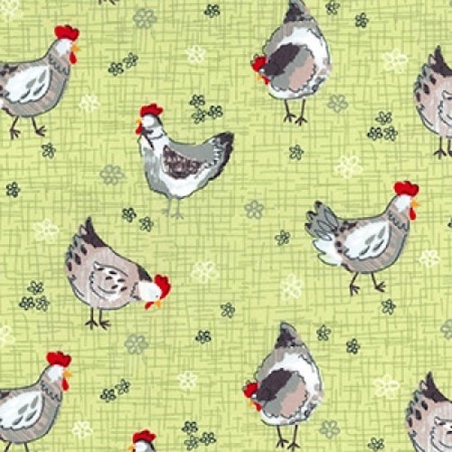 Chickens-Cotton